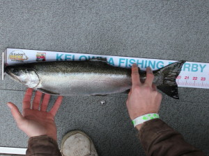 Kelowna fishing derby on Okanagan lake